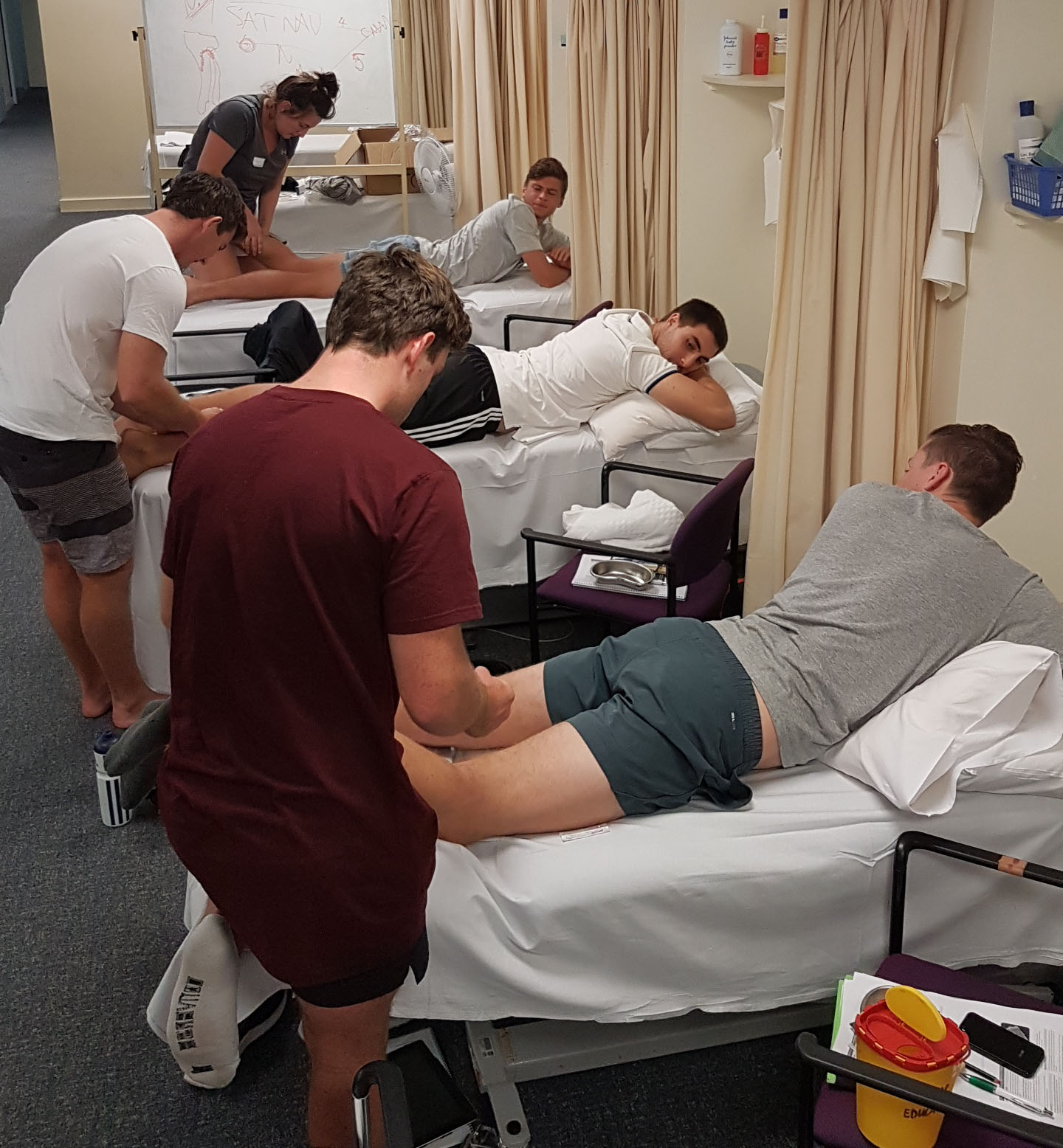 Dry needling professional development course.jpg