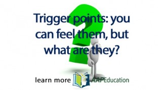 Trigger Points: You can feel them, but what are they?