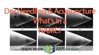 Dry Needling/Acupuncture: What's in a Name?