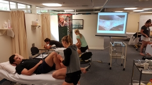 New Dry Needling Course structure hits the Mark